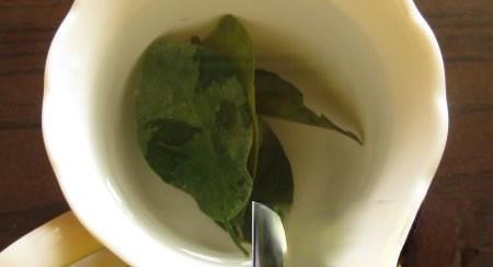金橘叶茶:乳房肿块的克星