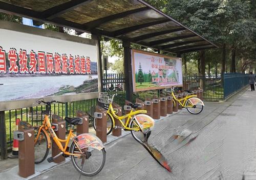 共享单车盛行,城市公共自行车将何去何从?