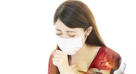 治风热咳嗽的食疗方和药疗方