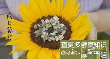 吃向日葵籽能使高血压恢复正常