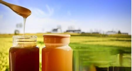 鲜鸡蛋、猪胆治甲沟炎 蜂蜜治甲沟化脓小偏方